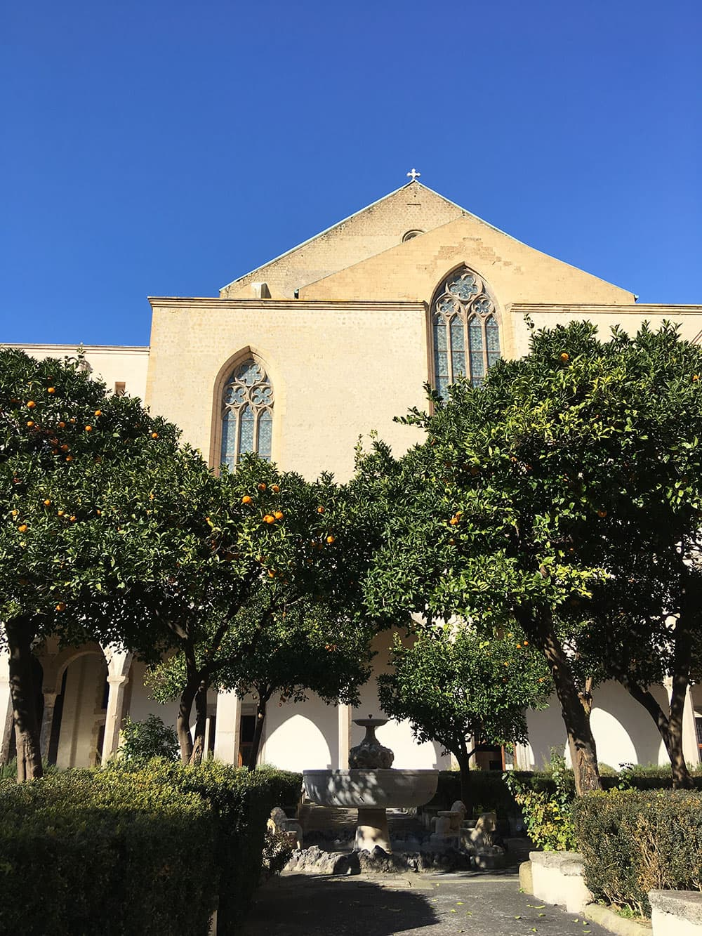 Mature orange trees in the Courtyard at Santa Chiara